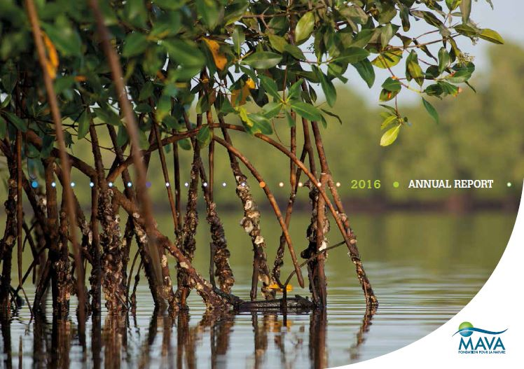 MAVA Annual Report 2016